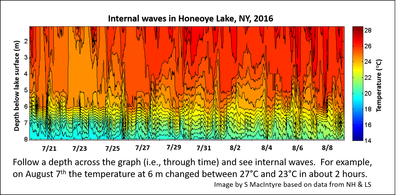 Honeoye Lake water temperatures as a function of date in July and August 2016